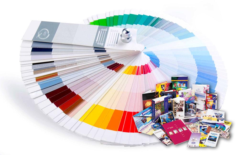 quattrocolori stampa veloce